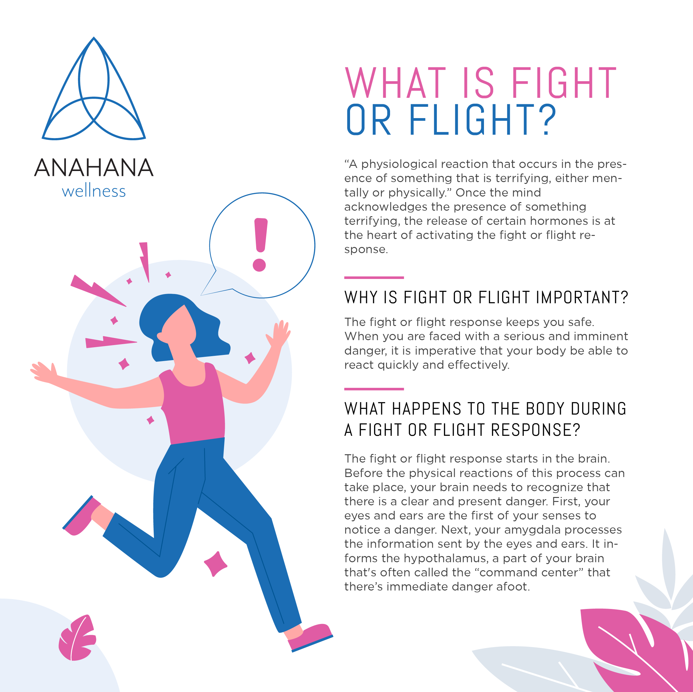 What is Fight or Flight