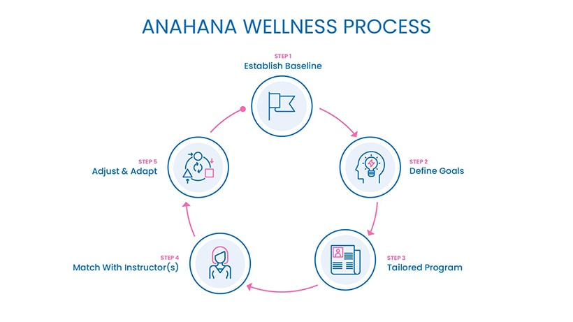 anahana-wellness-process-compressed
