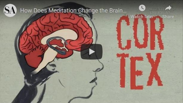 how meditation works video