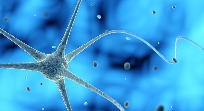 nerve cell in a blue background 3d illustration